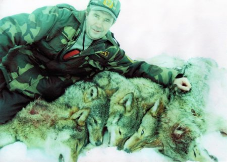 Photo of trophies of hunting for a wolf