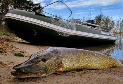 Отличная рыбалка на щуку в Белорусси на чистой реке Нарочанка